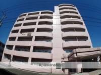 エクセリア駅南[7階]の外観