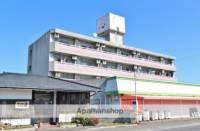 徳島県小松島市金磯町の賃貸マンションの外観