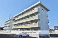 徳島県小松島市横須町の賃貸マンションの外観