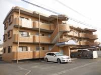 熊本県熊本市東区長嶺南8丁目の賃貸マンションの外観