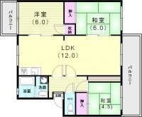 兵庫県神戸市須磨区横尾7丁目の賃貸マンションの間取り