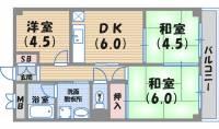 コーポ大社[4階]の間取り