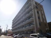 愛知県名古屋市南区弥次ヱ町1丁目の賃貸マンションの外観