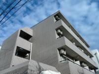 第5島栄ビル[303号室]の外観