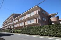 コーポレート川越新宿1号棟[406号室]の外観