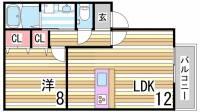 兵庫県神戸市中央区坂口通5丁目の賃貸アパートの間取り