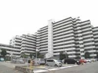 グレーシィ須磨壱番館[2階]の外観