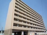 ロイヤルシティ自由ヶ丘[8階]の外観