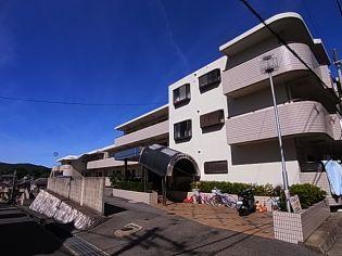 ロイヤルコート山の街[B305号室]の外観