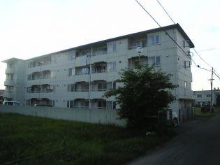 北海道帯広市西十四条南3丁目の賃貸マンションの外観