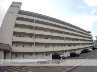新潟昭和ビル駅南[503号室]の外観