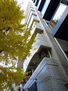 GSハイム新宿南口[1004号室]の外観
