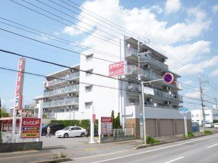 ジェントルコート五井東館[306号室]の外観