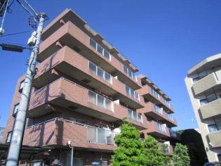 ドミール武蔵浦和[102号室]の外観