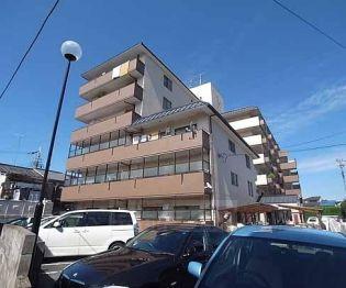 京都府京都市西京区桂池尻町の賃貸マンションの外観