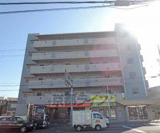 大阪府三島郡島本町江川の賃貸マンションの外観