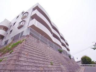 プリマベーラ千鳥ヶ丘[103号室]の外観