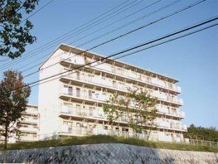 兵庫県神戸市北区ひよどり台3丁目の賃貸マンションの外観