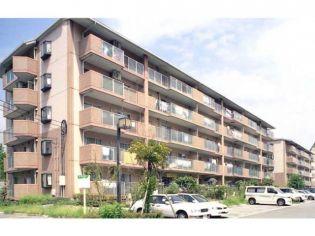 兵庫県三田市すずかけ台3丁目の賃貸マンションの外観