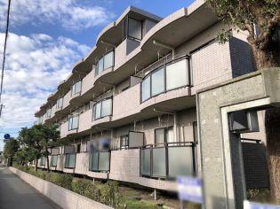 ベルデュール湘南太平台[0103号室]の外観
