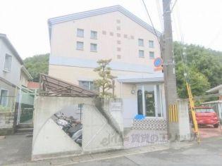 ロフティ松ヶ崎[205号室]の外観