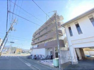 コーポ西賀茂[402号室]の外観